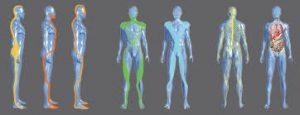 Méthode Busquet - Chaînes Musculaires et Physiologiques