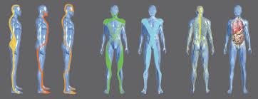 Chaînes Musculaires et Physiologiques : Méthode Busquet 1
